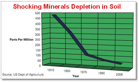 Related keywords suggestions for soil depletion for Mineral soil definition