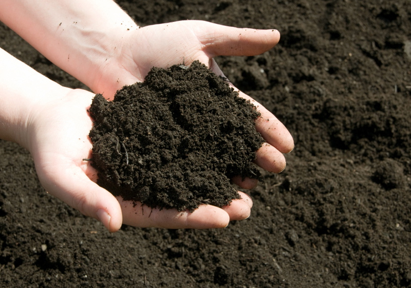 Different ways to apply CanAmaze Volcanic Rock Powder to Soil